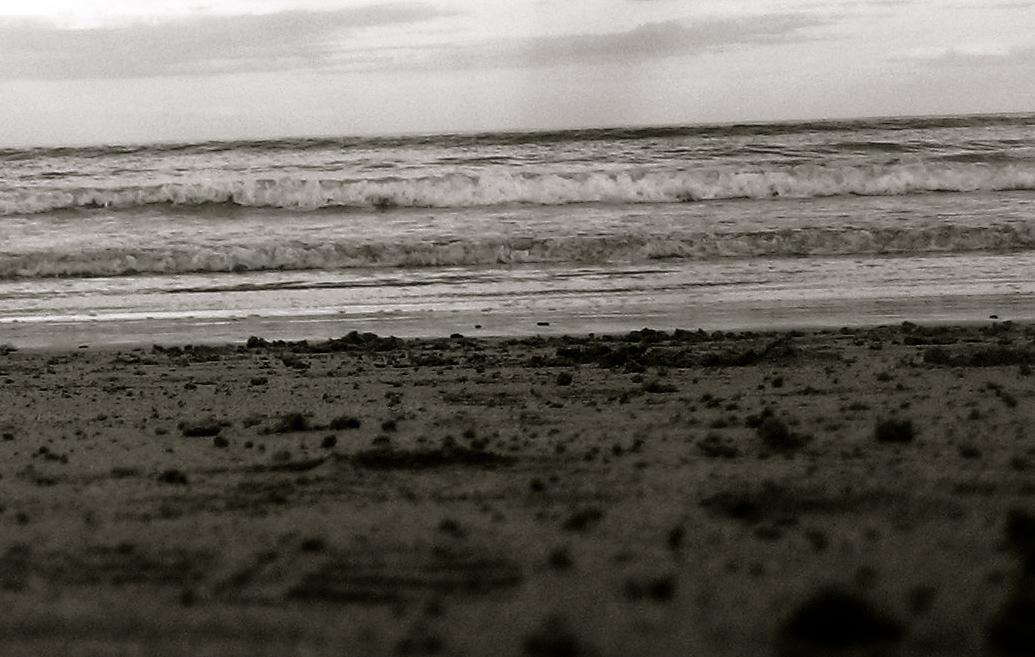 evening tide 2